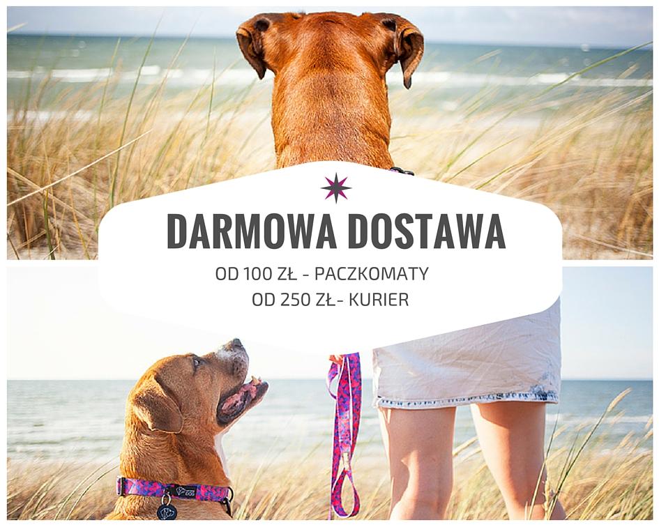 DARMOWADOSTAWA21