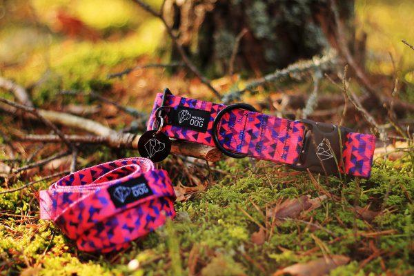 różowy zestaw obroża smycz dla psa stylowy dizajn