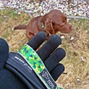 smycz-przepinana-z-podszyciem-neopren-warsaw-dog