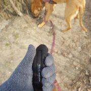 test-podszycia-rączki-w-smyczy-warsaw-dog