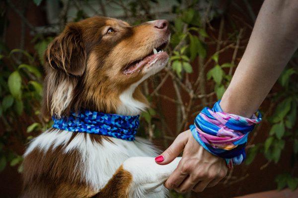 chusta dla psa bandamka apaszka dla psow