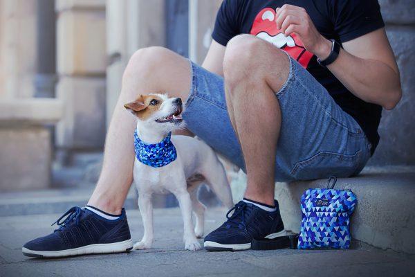 komin dla psa chusta bandama niebieska