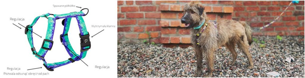 szelki guard dla psa - opis