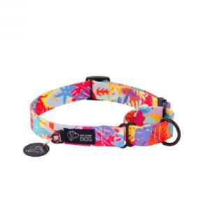 Personalizowana obroża dla psa typu martingale - kolorowa ze wzorem
