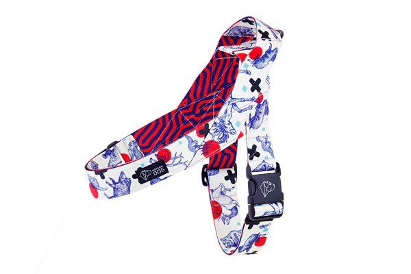 kolorowe szelki norweskie dla psa dizajnerskie