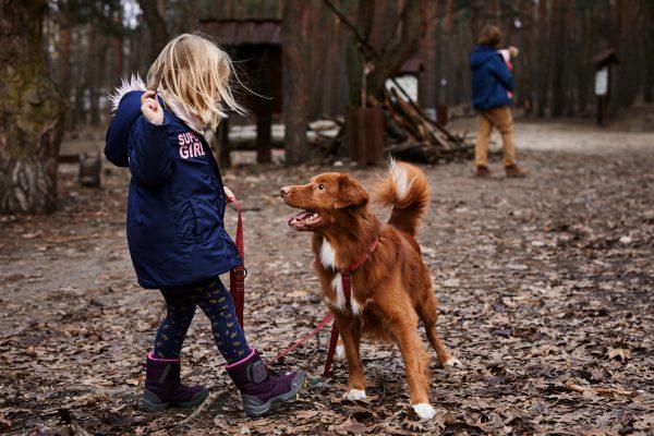 długa smycz regulowana dla psa z szelkami zestaw panterka