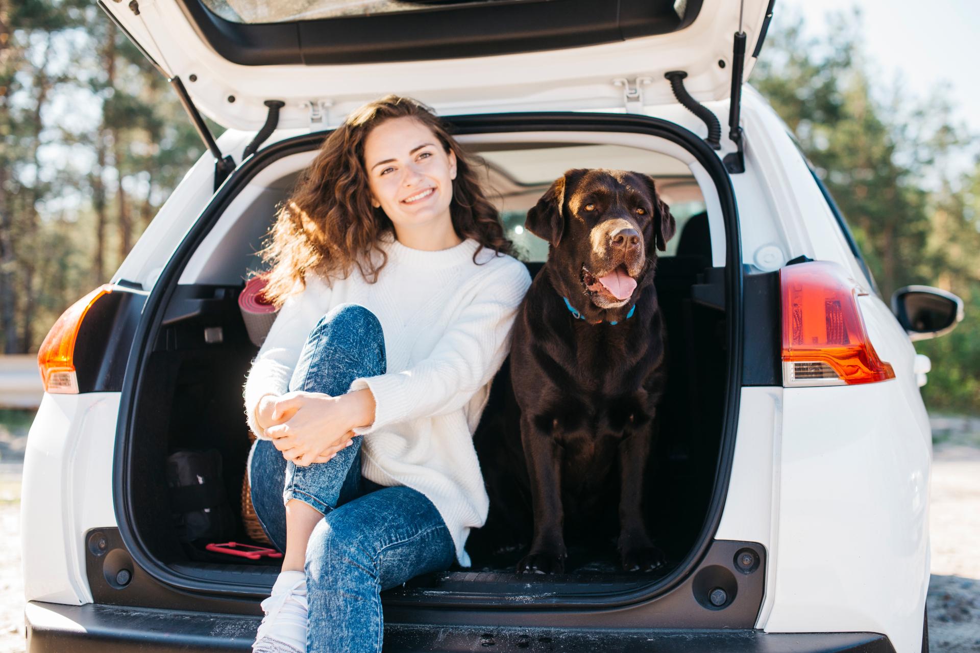 Choroba lokomocyjna u psa. Duży pies oraz jego właścicielka siedzą w bagażniku samochodu