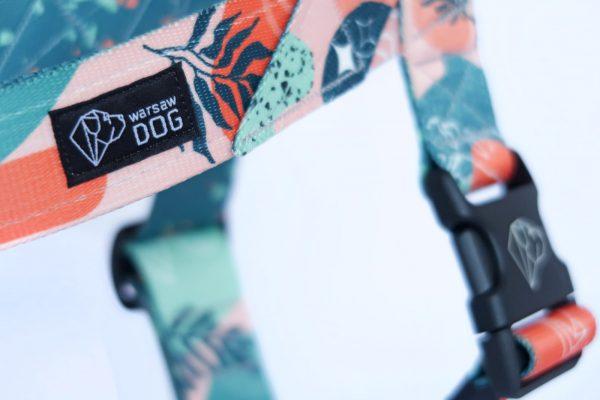 szelki norweskie zbliżenie zoom szczegół warsaw dog polska marka moda dla psa
