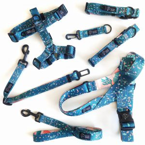 zestaw komplet spacerowy dla psa obroza szelki smycz dizajn dla psa confetti