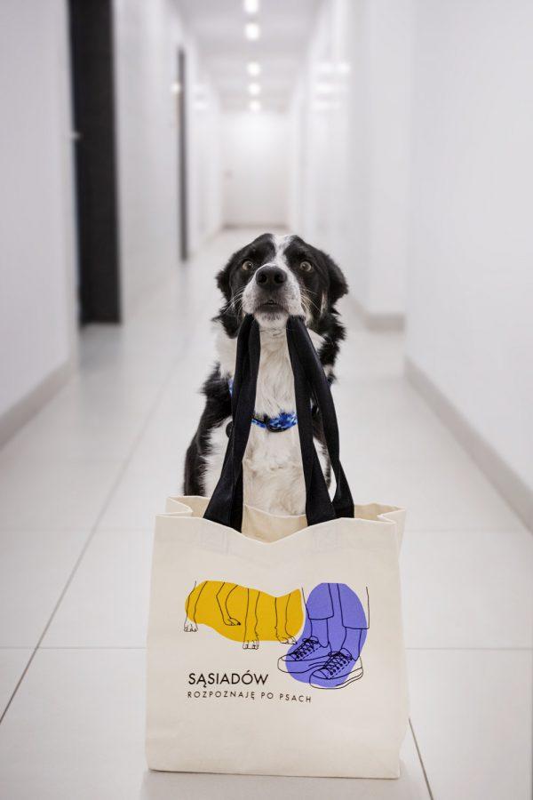 torba dla miłośnika zwierząt rozpoznaje po psach